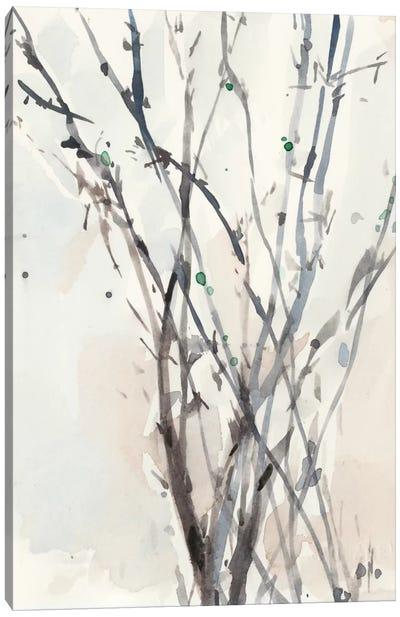 Watercolor Branches II Canvas Art Print