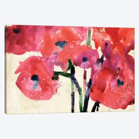 Blossom View II Canvas Print #DIX36} by Samuel Dixon Art Print