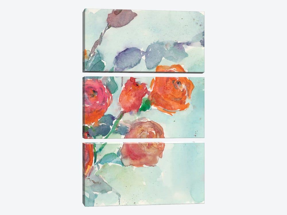 Rose Appeal II by Samuel Dixon 3-piece Canvas Artwork