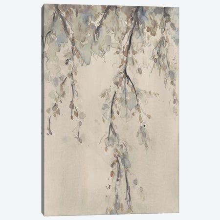 Casual Shade I Canvas Print #DIX89} by Samuel Dixon Canvas Print