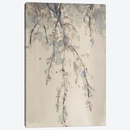 Casual Shade II Canvas Print #DIX90} by Samuel Dixon Canvas Art