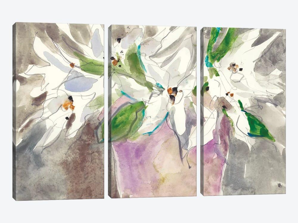 Magnolia Charm I by Samuel Dixon 3-piece Canvas Art