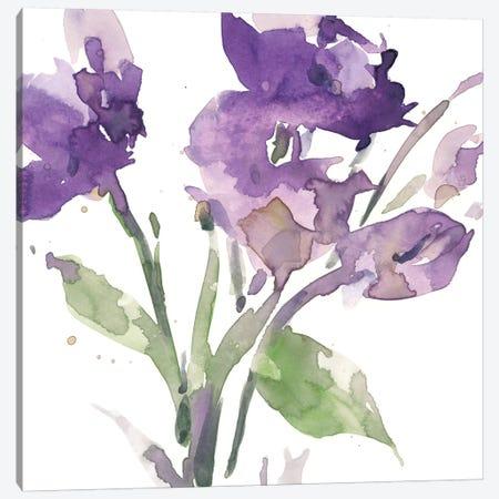 Garden Blooms I 3-Piece Canvas #DIX94} by Samuel Dixon Canvas Print