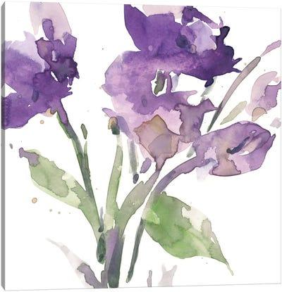 Garden Blooms I Canvas Art Print