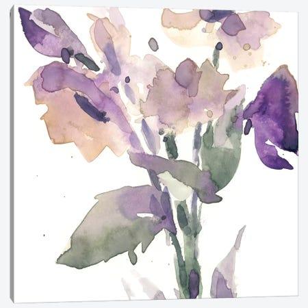 Garden Blooms II Canvas Print #DIX95} by Samuel Dixon Canvas Art Print