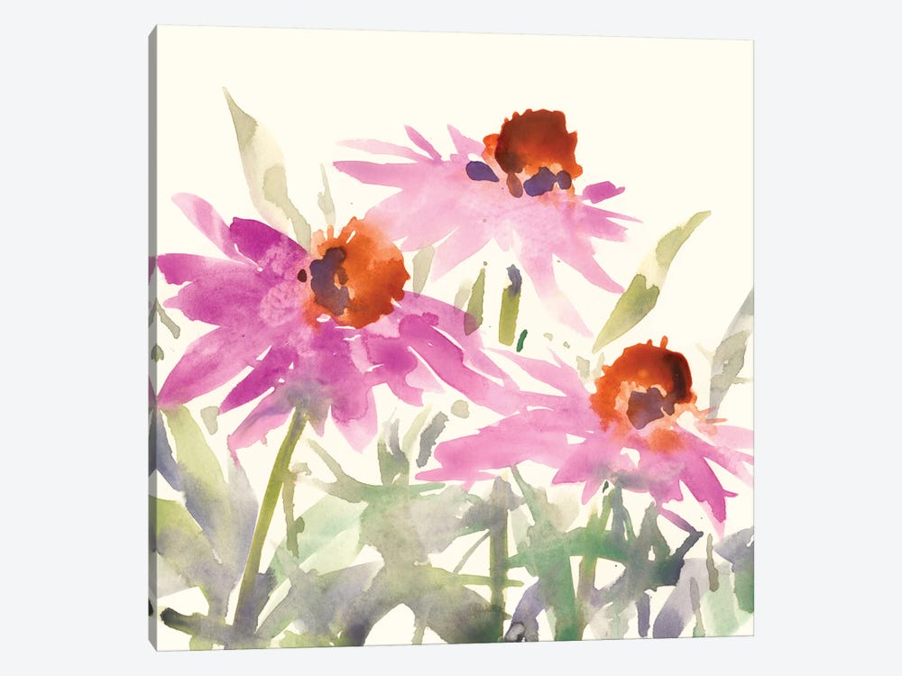 Daisy Garden Views II by Samuel Dixon 1-piece Canvas Wall Art
