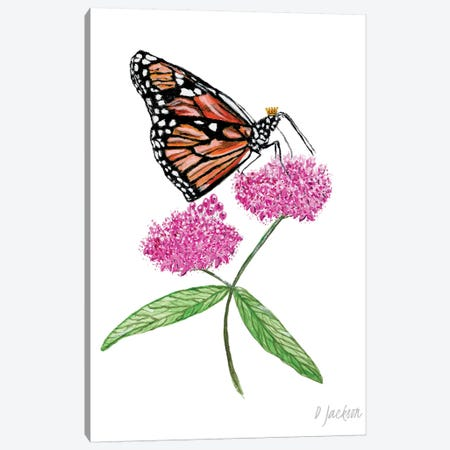 Monarch Butterfly On Pink Milkweed Flower Canvas Print #DJA17} by Dawn Jackson Canvas Art