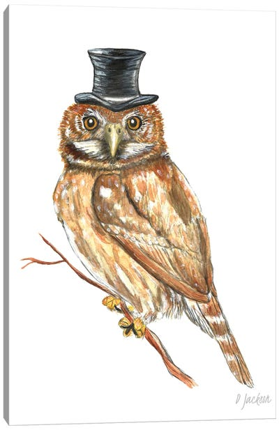 Owl In Top Hat Canvas Art Print