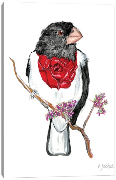 Rosebreasted Grosbeak Canvas Art Print