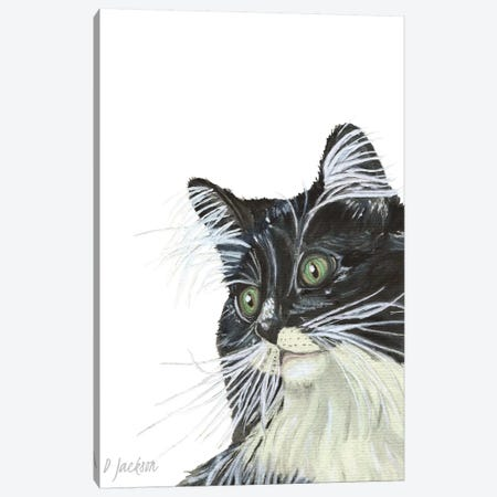 Tuxedo Cat Canvas Print #DJA23} by Dawn Jackson Canvas Art