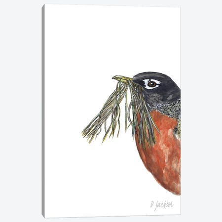 Spring Robin Canvas Print #DJA35} by Dawn Jackson Canvas Artwork