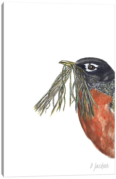Spring Robin Canvas Art Print