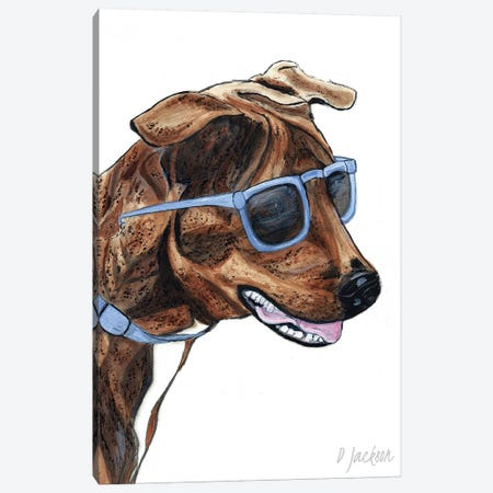 Brindle Dog In Sunglasses Canvas Print #DJA43} by Dawn Jackson Canvas Artwork
