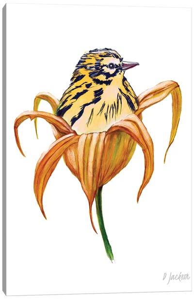 Bird In Orange Lily Canvas Art Print