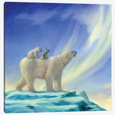 Isabella And The Northern Lights Canvas Print #DJQ32} by David Joaquin Canvas Art Print