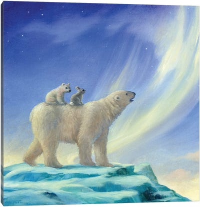 Isabella And The Northern Lights Canvas Art Print
