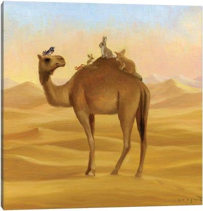 Isabella And The Sahara Canvas Art Print