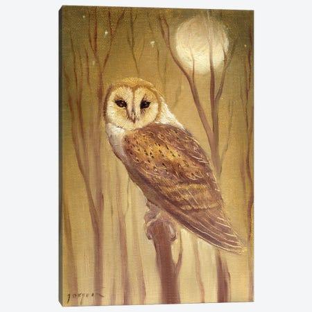 The Owl Canvas Print #DJQ38} by David Joaquin Art Print