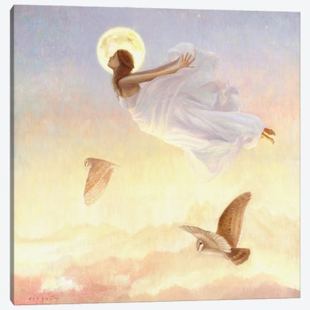 Dreaming Canvas Print #DJQ48} by David Joaquin Canvas Artwork