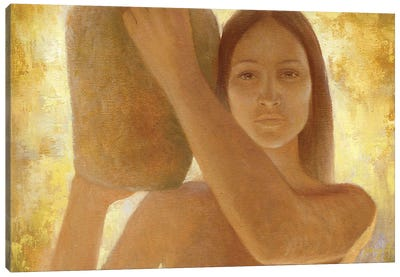Anasazi Canvas Art Print