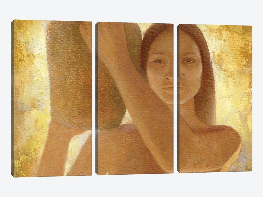 Anasazi by David Joaquin 3-piece Canvas Art Print