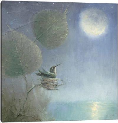 Hummingbird Moon Canvas Art Print