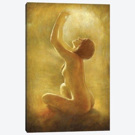 Holding The Light Canvas Print #DJQ65} by David Joaquin Art Print