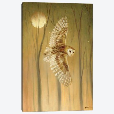 Night Owl Canvas Print #DJQ67} by David Joaquin Art Print