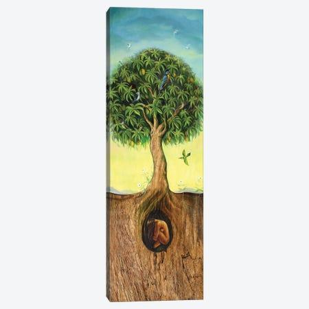 Tree Of Life Canvas Print #DJQ69} by David Joaquin Canvas Wall Art