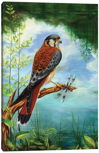 Little Warrior Canvas Art Print