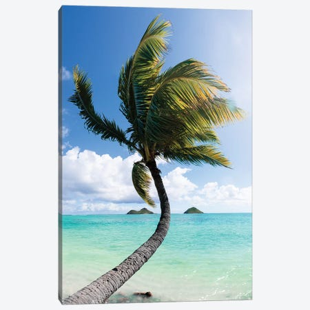 Palm I Canvas Print #DKE21} by Daniel Keating Art Print