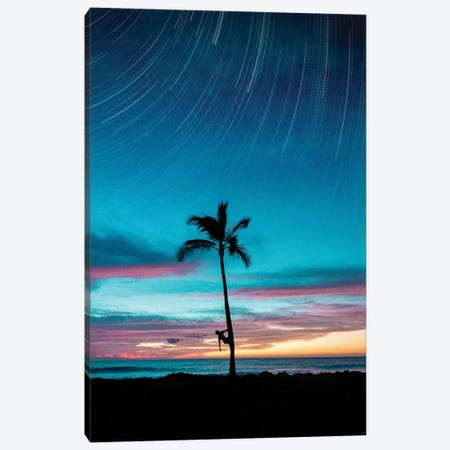 Startrail Palm Canvas Print #DKE32} by Daniel Keating Canvas Artwork