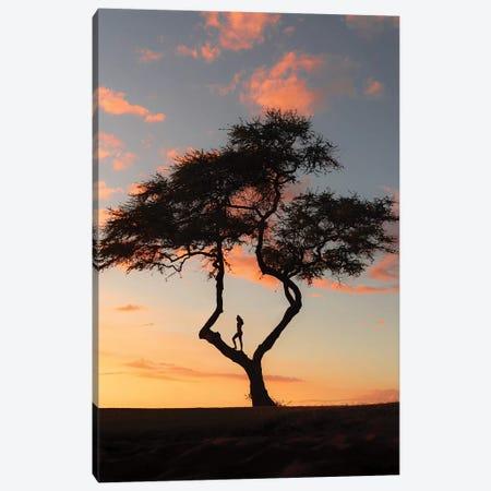 Treevibes Canvas Print #DKE37} by Daniel Keating Canvas Print