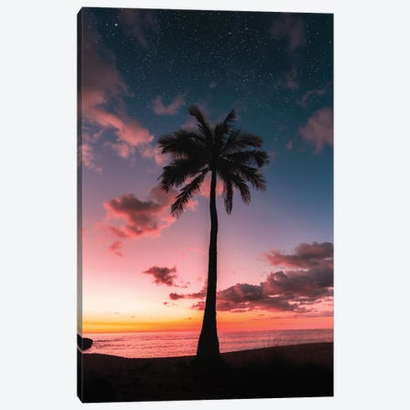 Space Palm Canvas Print #DKE47} by Daniel Keating Canvas Art
