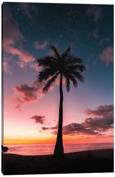 Space Palm Canvas Art Print