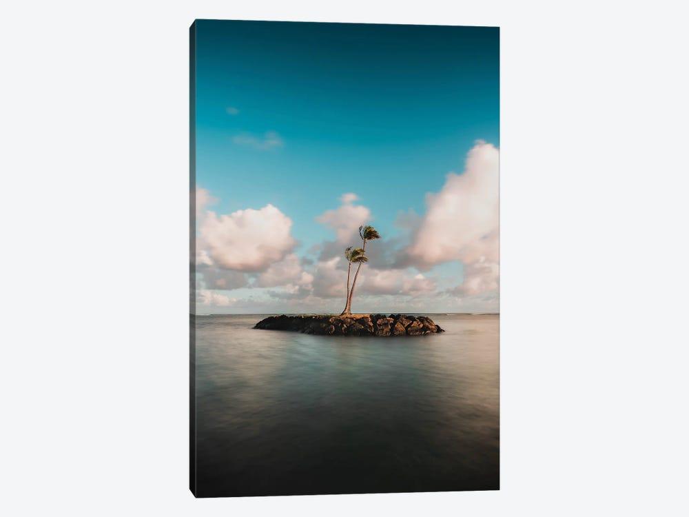 Island Palms by Daniel Keating 1-piece Canvas Artwork