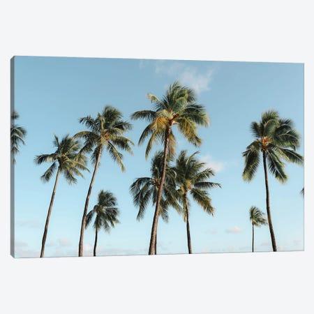 Paradise Palms - Oahu, Hawaii Canvas Print #DKE76} by Daniel Keating Art Print
