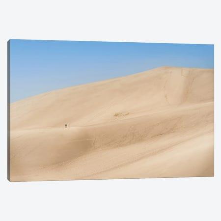 Sand Dunes Canvas Print #DKE86} by Daniel Keating Canvas Artwork