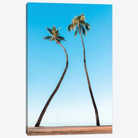 Double Palm Canvas Print #DKE9} by Daniel Keating Canvas Art