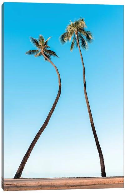 Double Palm Canvas Art Print