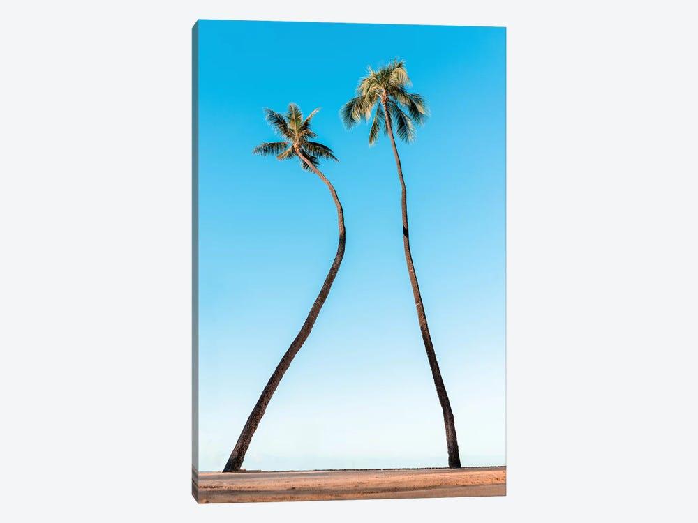 Double Palm by Daniel Keating 1-piece Canvas Art