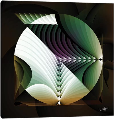 Sonosphere Canvas Art Print