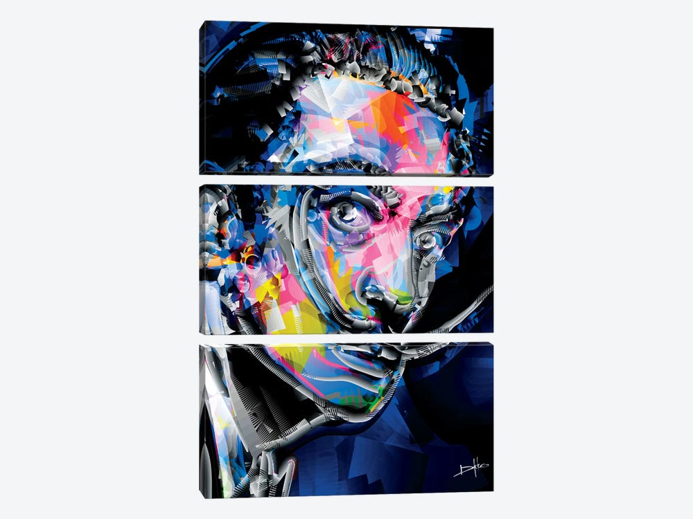 Dali I by Darkko 3-piece Canvas Art Print