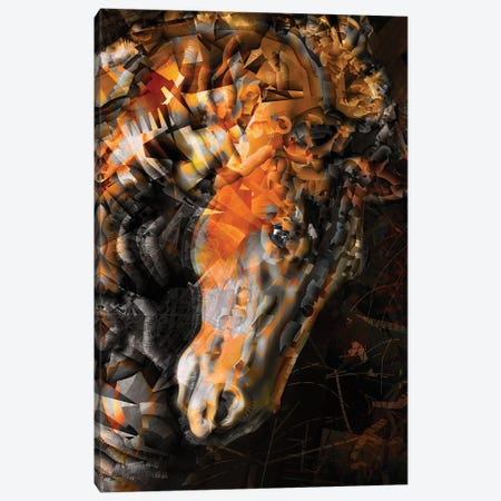 Wild Horse Canvas Print #DKK33} by Darkko Canvas Artwork