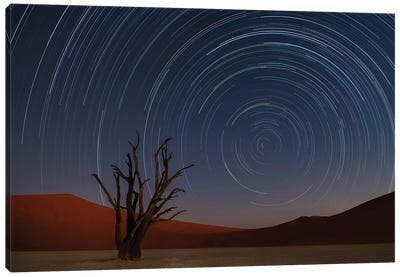 Star Trails Of Namibia Canvas Art Print