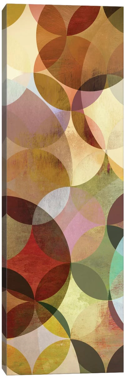 Multi-sliced I Canvas Art Print