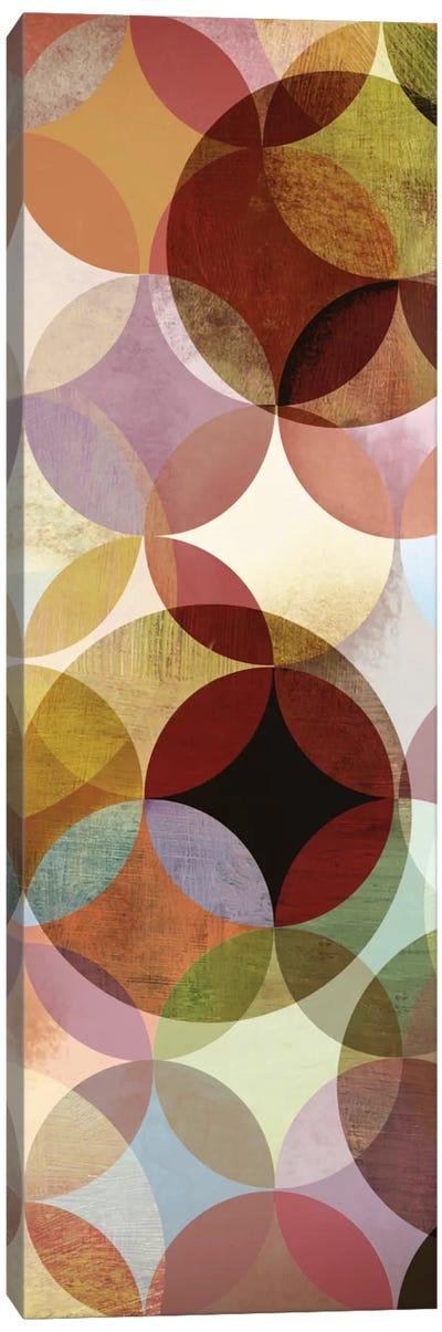 Multi-sliced II Canvas Art Print