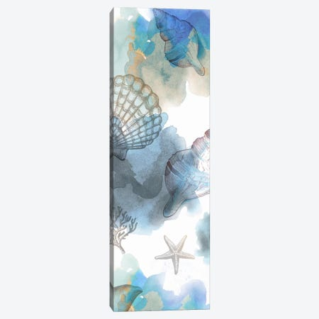 Shell Reflections I Canvas Print #DKO38} by Drako Fontaine Canvas Wall Art