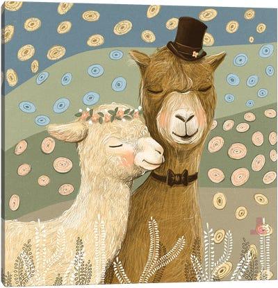 Llamas Canvas Art Print