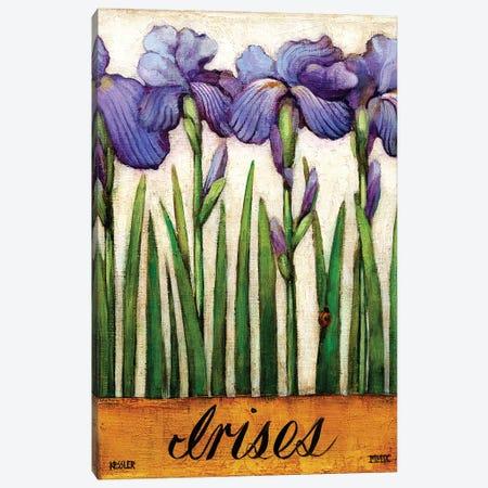 Irises Canvas Print #DKS50} by Daniel Patrick Kessler Canvas Artwork
